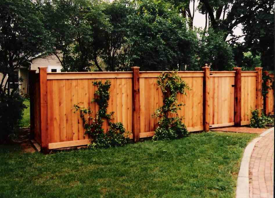 Image of: Amazing Wood Fencing Panels