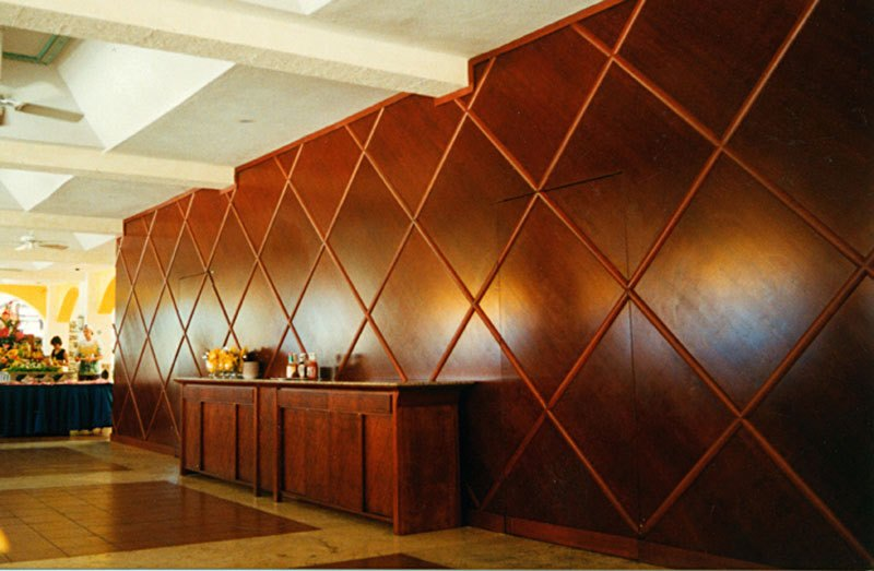 Interior Design Wood Paneling