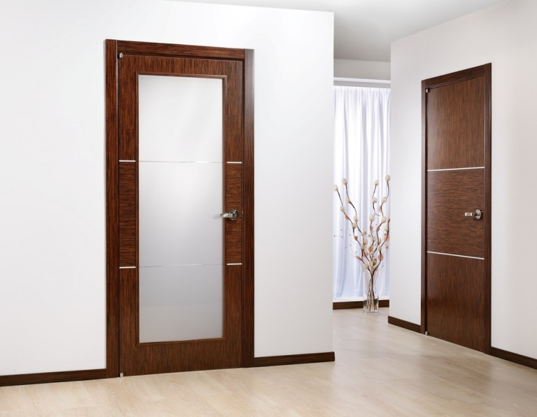 Image of: Interior Wood Door Frosted Glass Panels