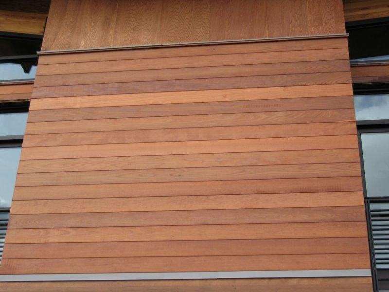 Image of: Modernizing Wood Paneling