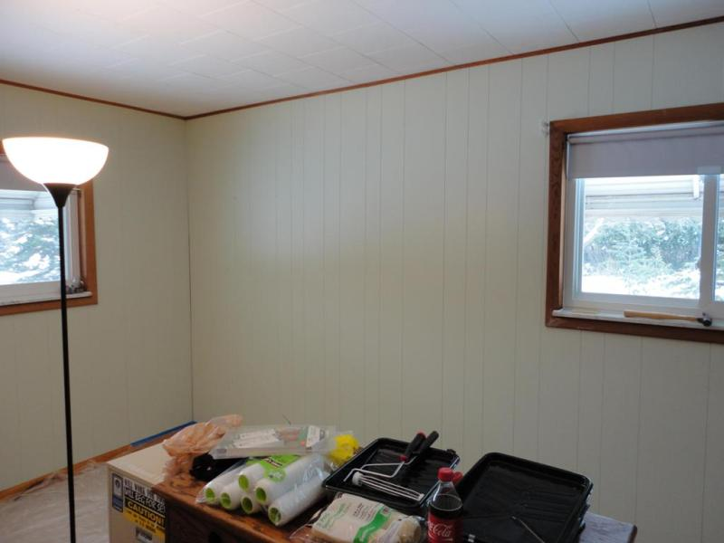 Image of: Painting Over Fake Wood Paneling Ideas