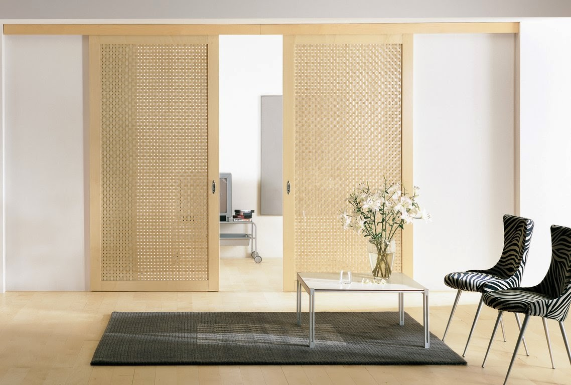 Image of: Two Panel Doors Sliding