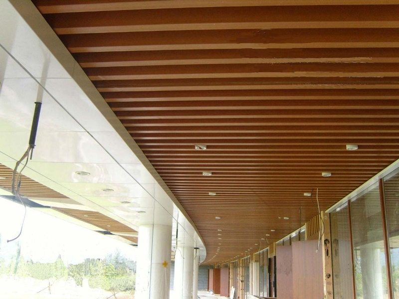 Image of: Wood Paneling For Outdoor Ceiling