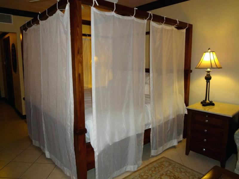 Picture of: Canopy Bed Curtain Ideas