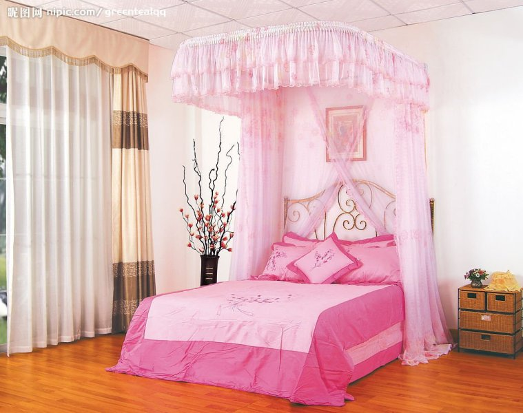 Picture of: Girl Canopy Bed Ideas