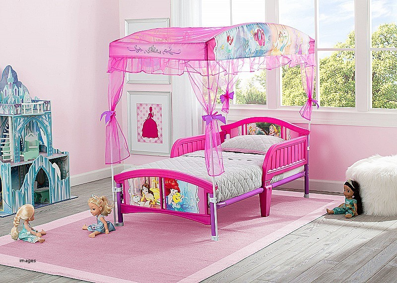 Image of: Princess Canopy Bed Toddler