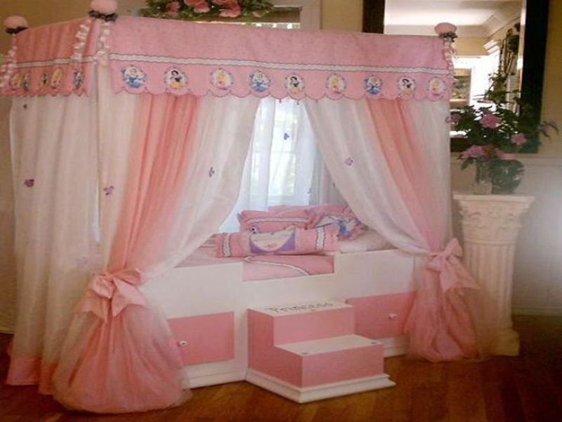 Toddler Princess Canopy Bed