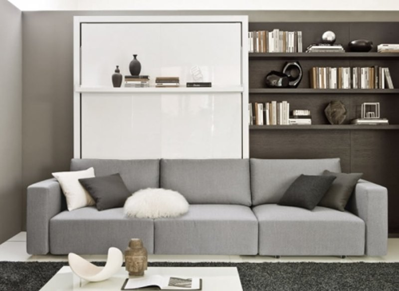 Image of: Modern Panel Couch Murphy Bed