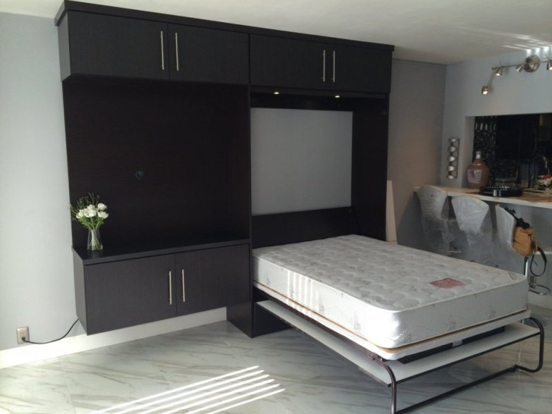 Image of: Twin Murphy Bed Kit