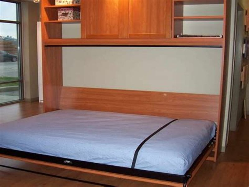 Image of: Twin Size Murphy Bed Kit
