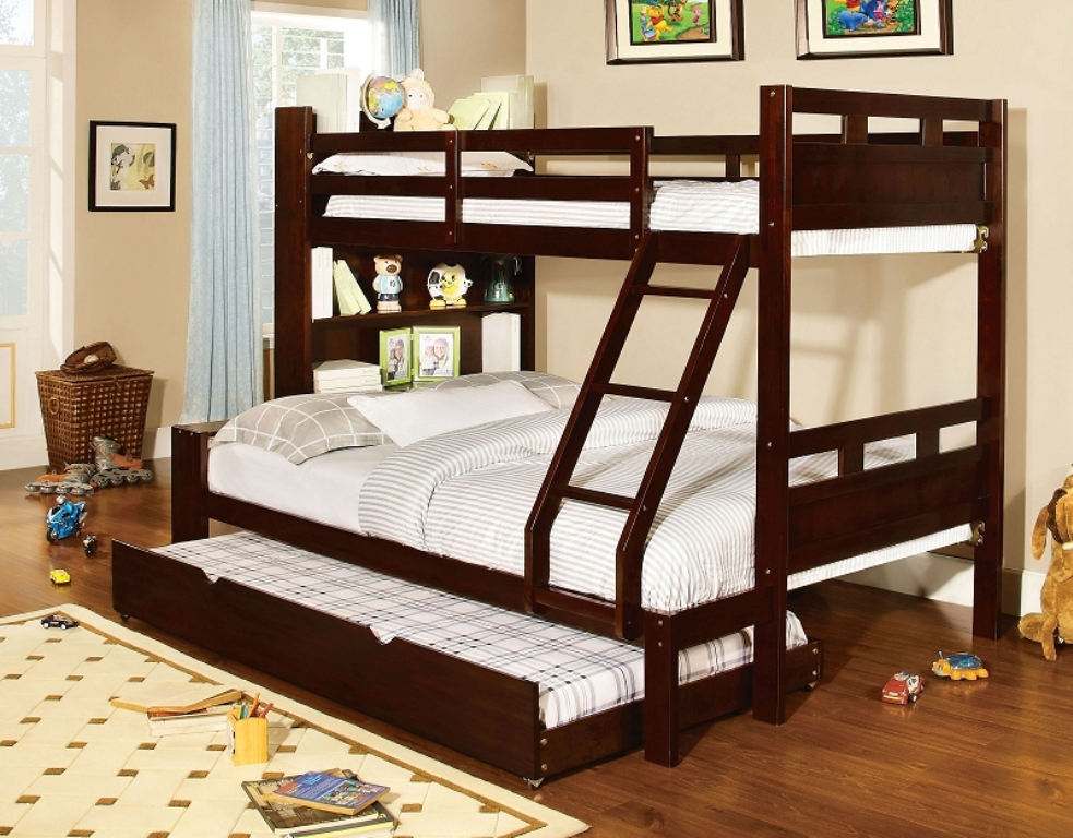 Image of: Bookcase Bunk Bed