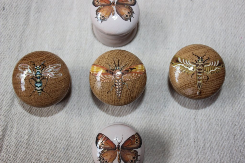 Image of: Wooden Dresser Knobs