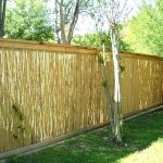 Affordable Pool Fence Ideas