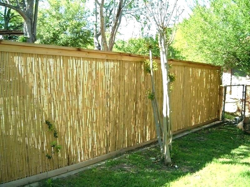 Picture of: Affordable Pool Fence Ideas