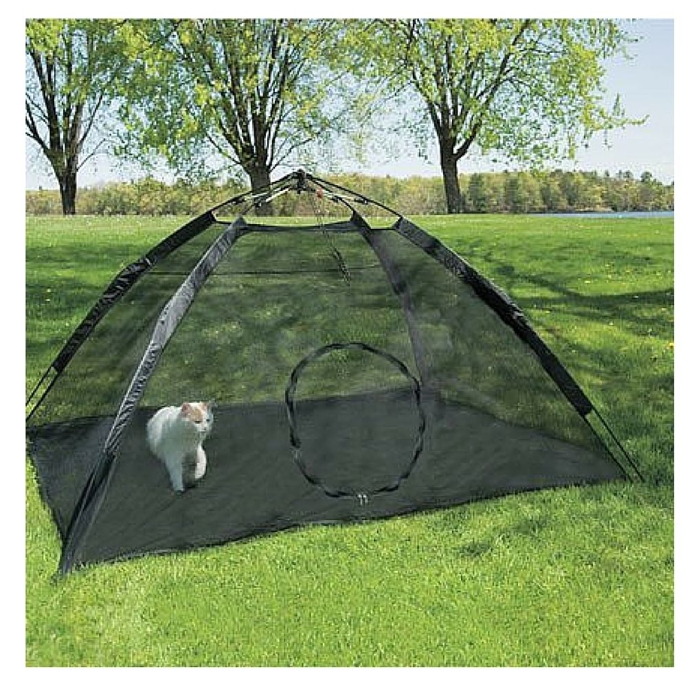 Picture of: Amazing Portable Dog Fence
