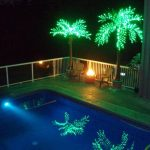 At Swimming Pool Outdoor Lighted Palm Tree