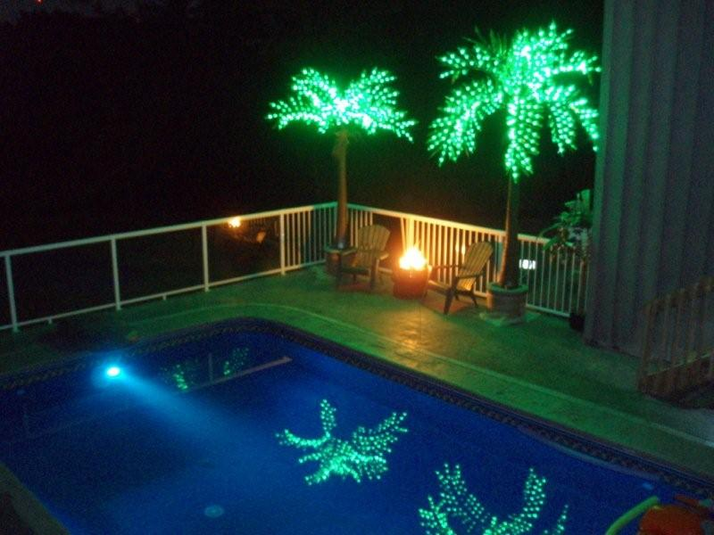 Picture of: At Swimming Pool Outdoor Lighted Palm Tree