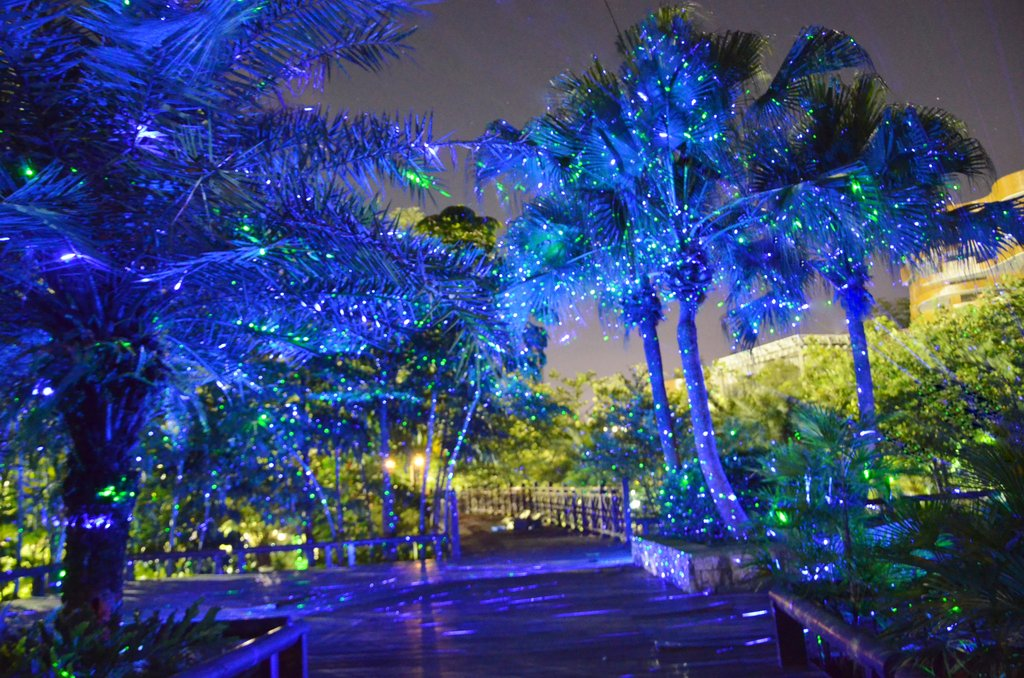 Picture of: Awesome Outdoor Christmas Laser Lights