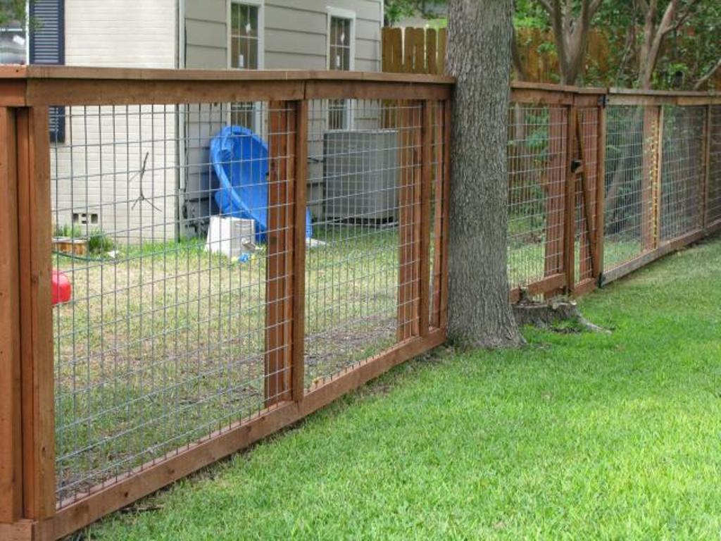 Picture of: Backyard Dog Fences Outdoor