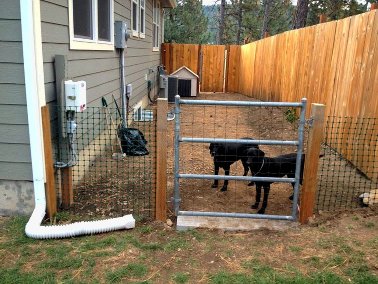 Picture of: Backyard Fence Ideas Cheap