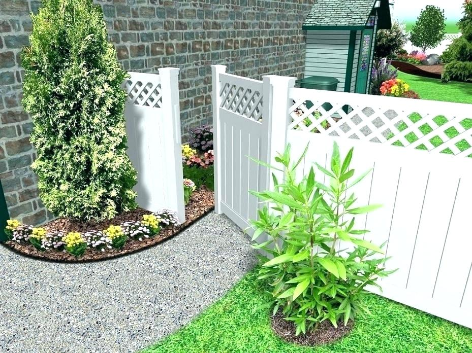 Picture of: Backyard Fence Ideas Pictures