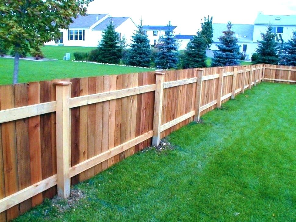 Picture of: Backyard Fence Ideas on a Budget