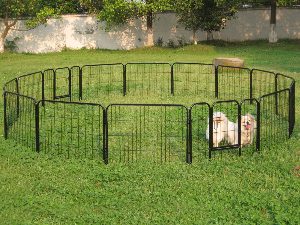 Picture of: Backyard Outdoor Dog Fence Panels