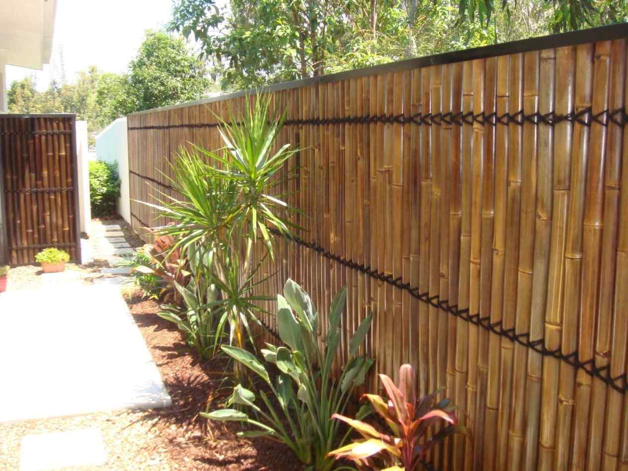 Picture of: Backyard Privacy Fence Ideas