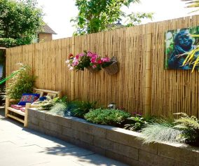 Bamboo Privacy Fence Ideas For Backyard