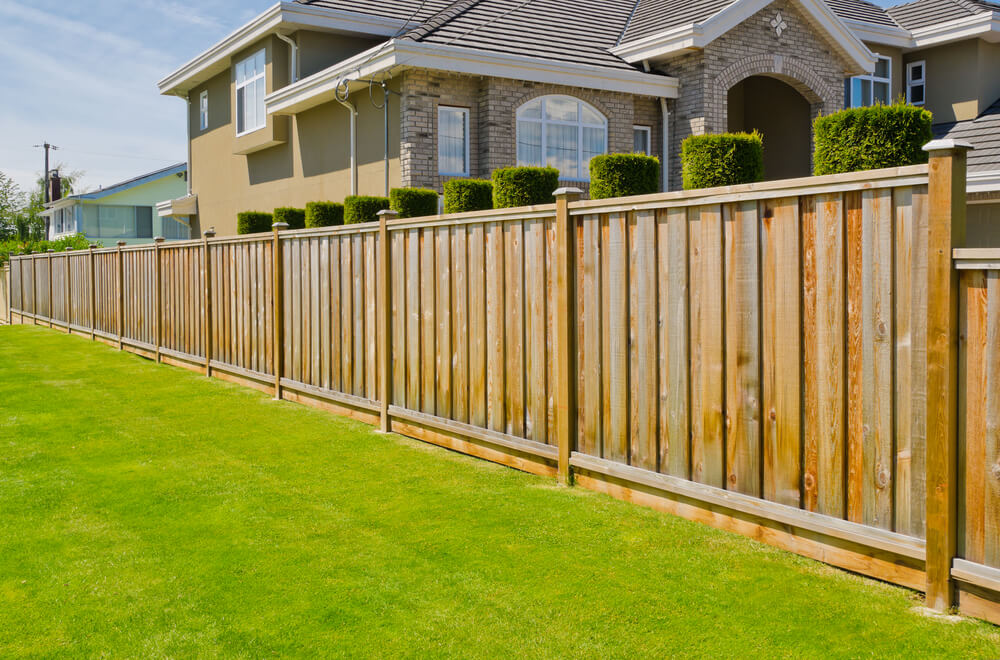 Picture of: Best Cheap Backyard Fence Ideas for Dogs