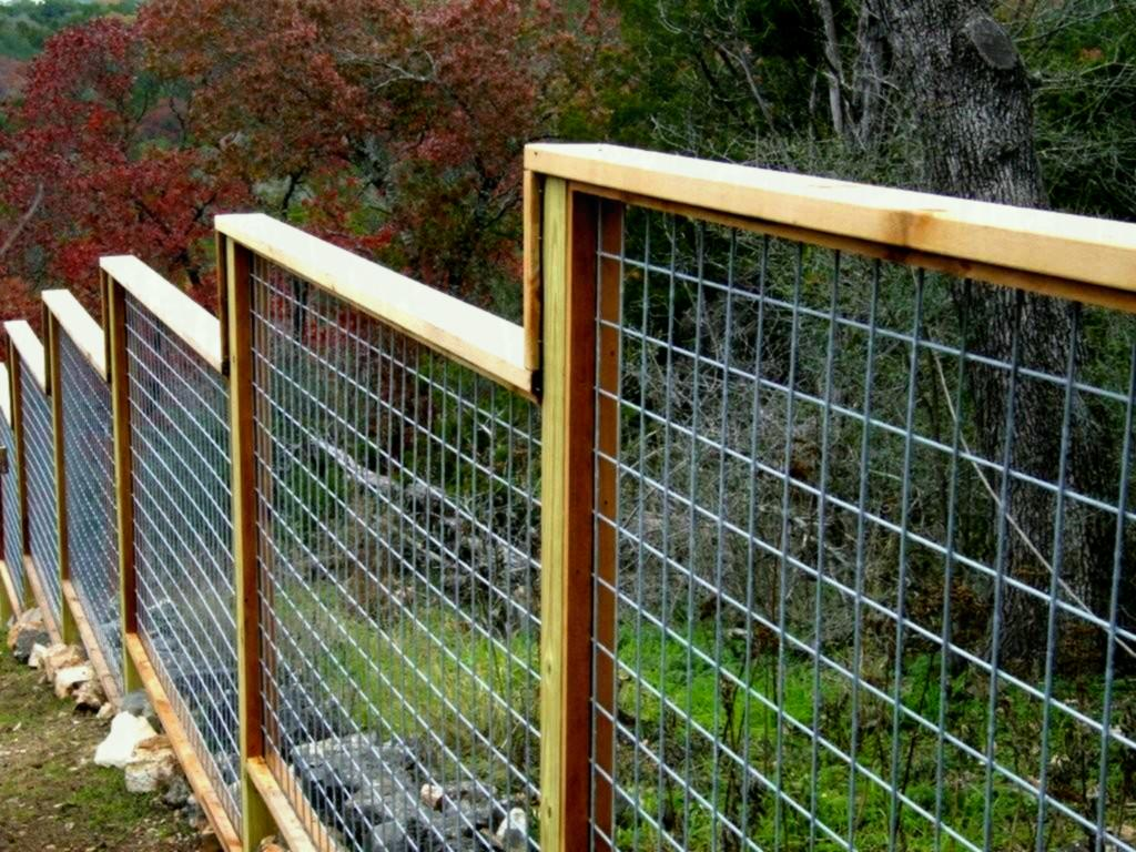 Picture of: Best Small Dog Fence