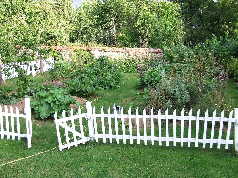 Picture of: Best Wireless Small Dog Fence