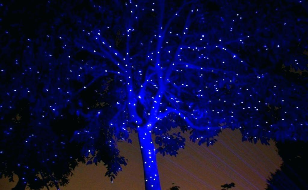 Picture of: Blue Outdoor Laser Light Projector