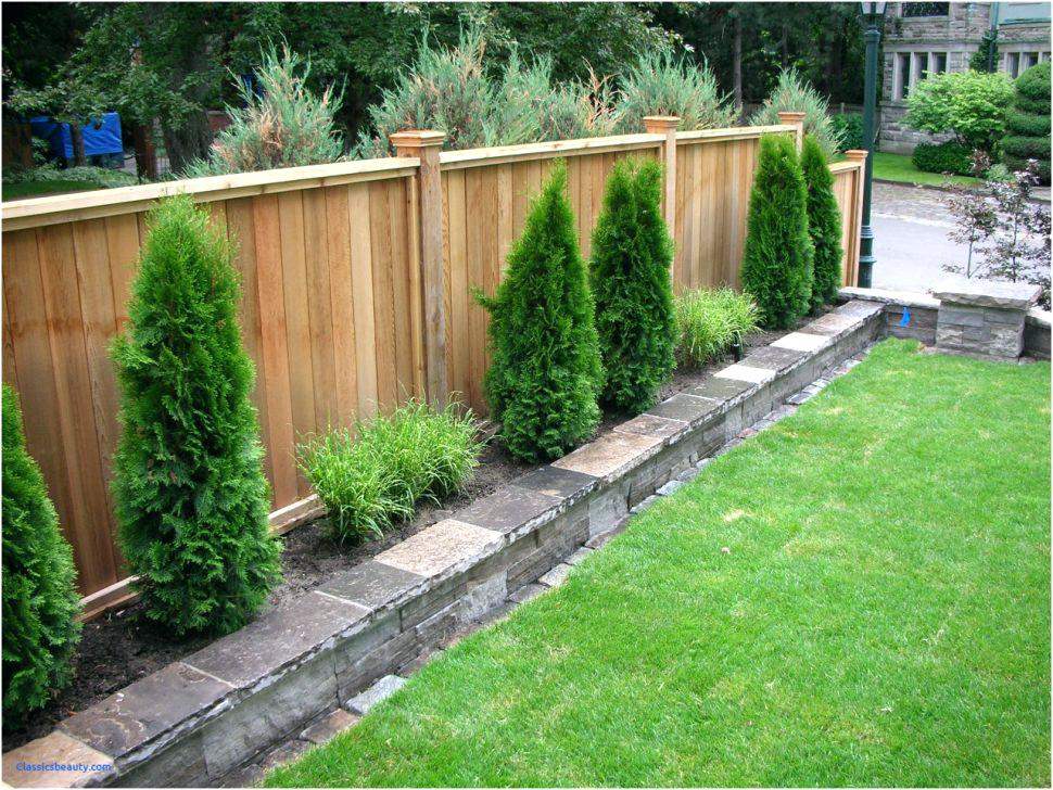 Picture of: Build Privacy Fence Ideas For Backyard