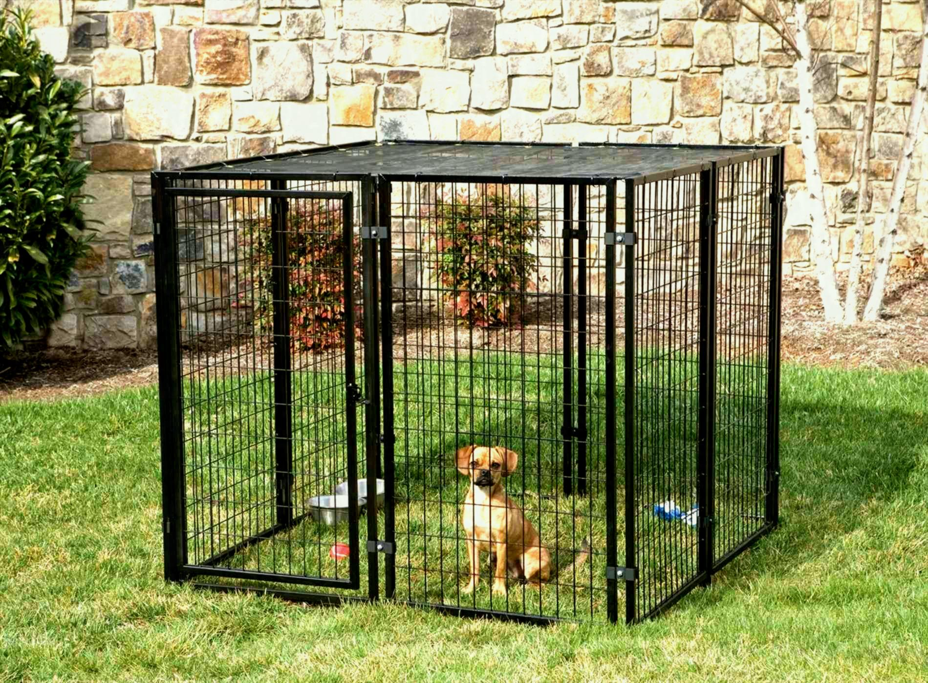 Picture of: Build Small Dog Fence