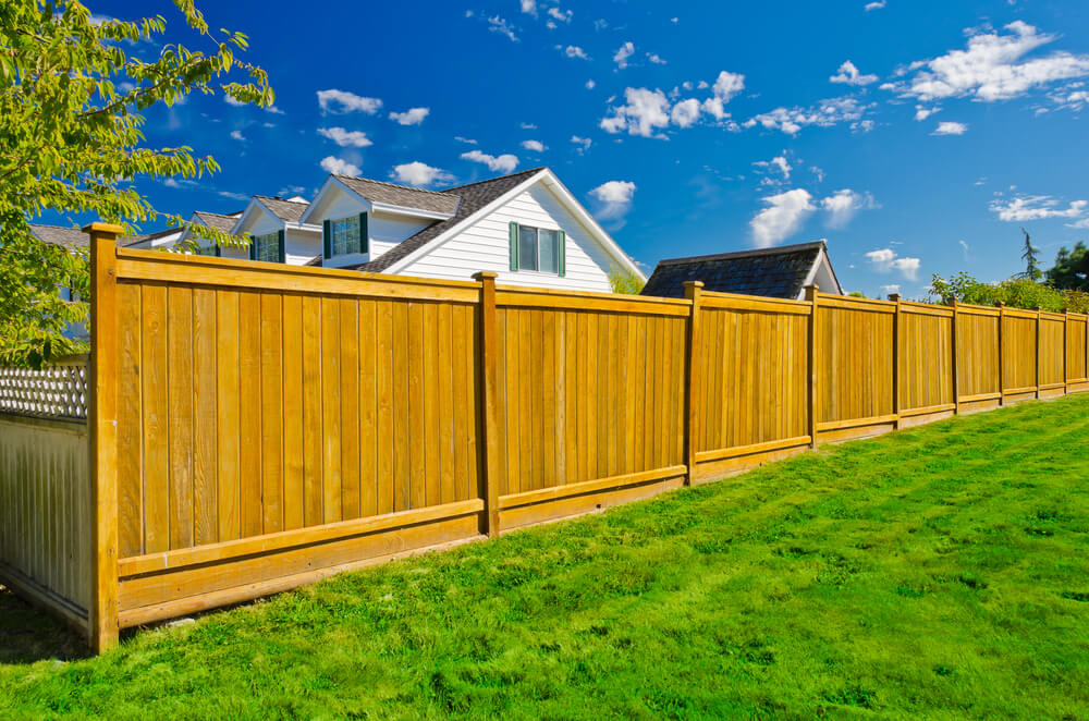 Picture of: Cedar Privacy Fence Ideas For Backyard