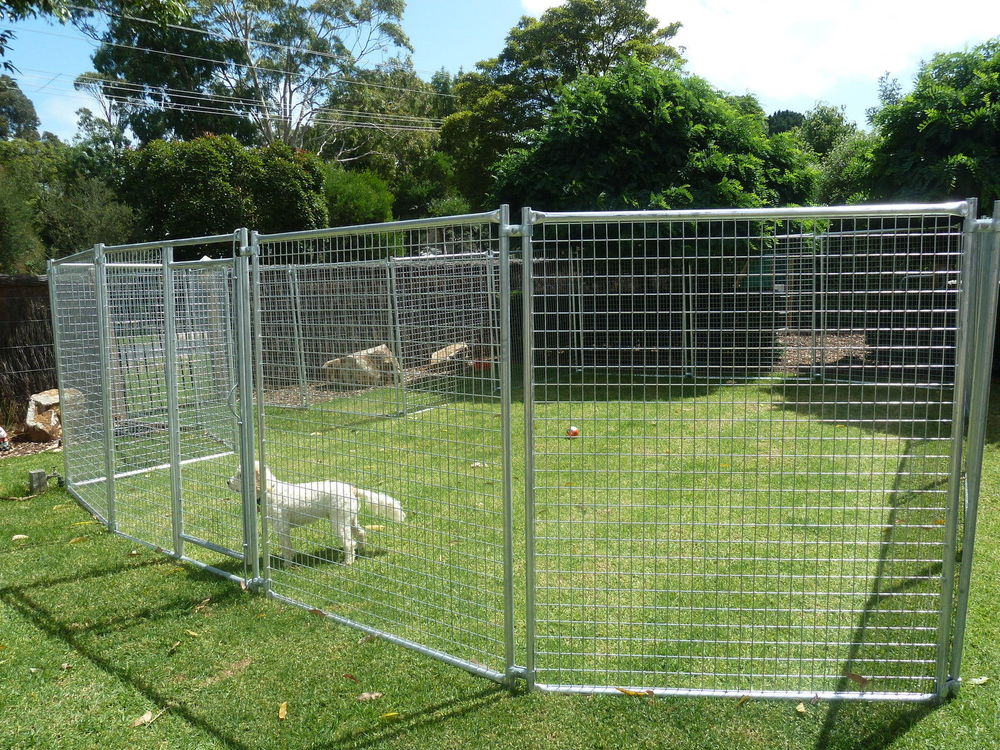 Chain Link Outdoor Dog Fence Panels