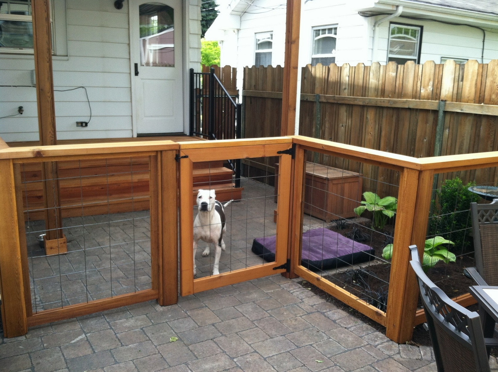 Picture of: Cheap Backyard Fence Ideas for Dogs