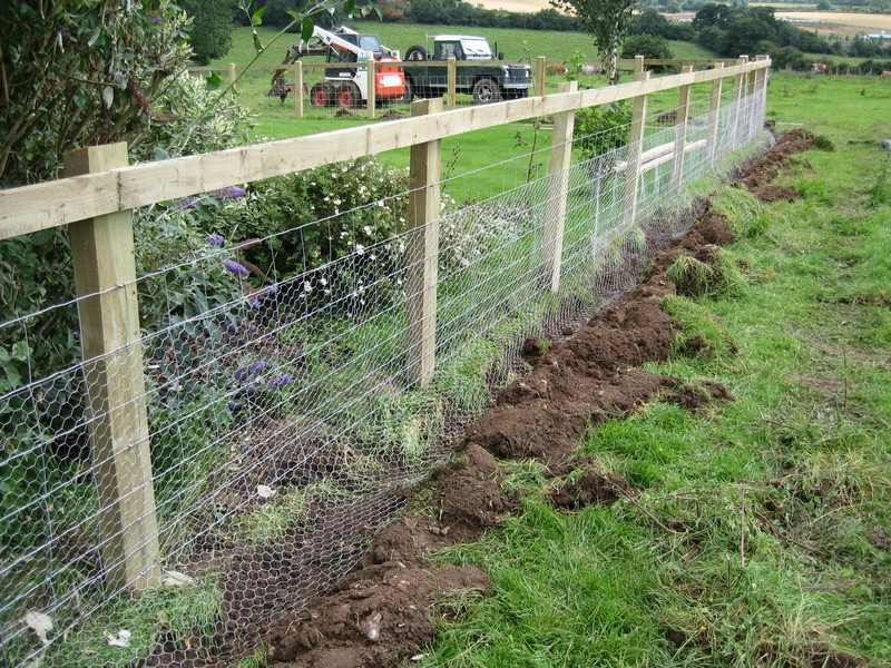 Picture of: Cheap Garden Fence Ideas