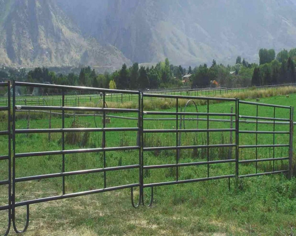 Picture of: Cheap Portable Fence Panels Ideas
