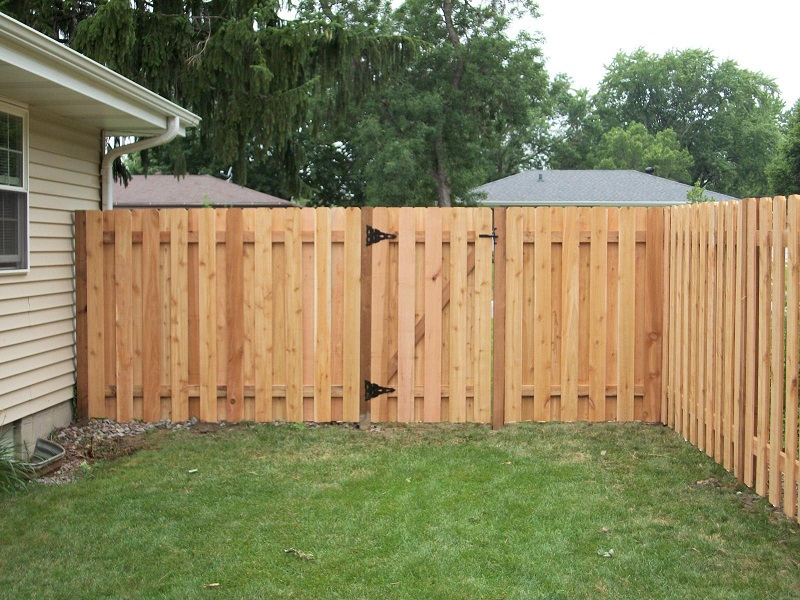 Picture of: Cheap Privacy Fence Ideas For Backyard