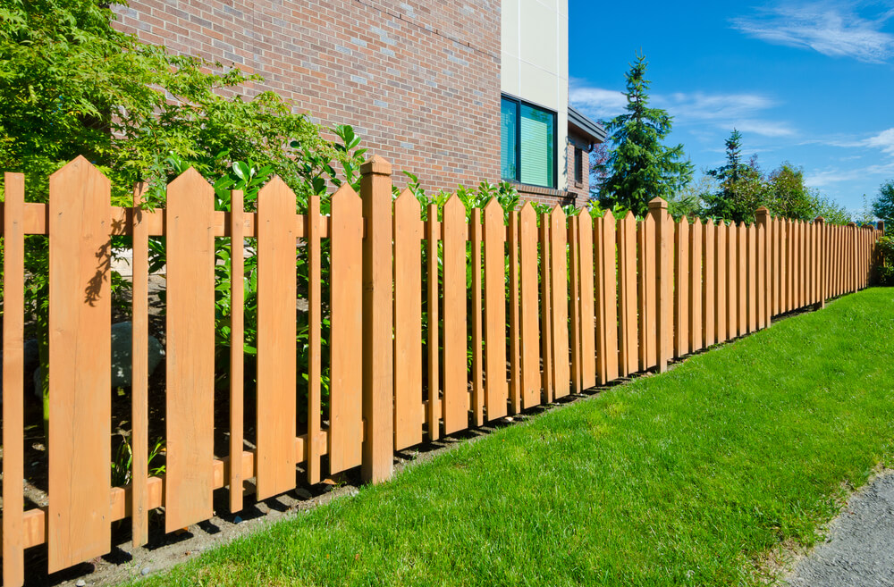 Picture of: Chicken Yard Fence Ideas