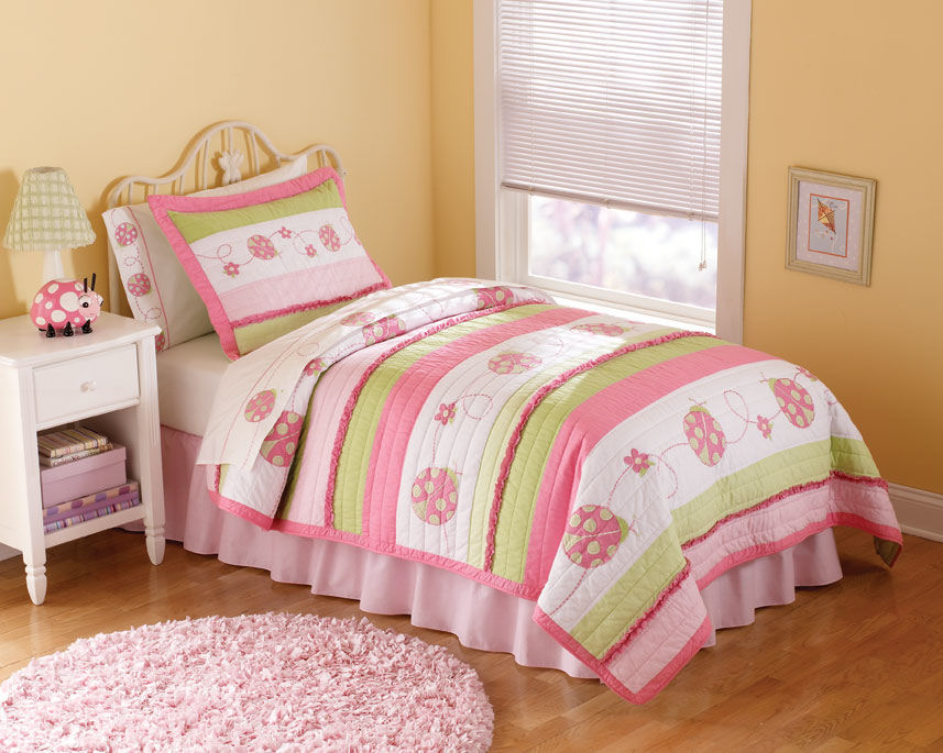 Picture of: Concept Pink Twin Comforter Set