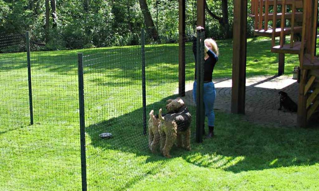 Picture of: Concept Portable Dog Fence
