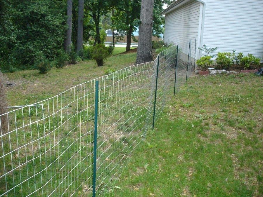 Best Patio Backyard Fence Ideas