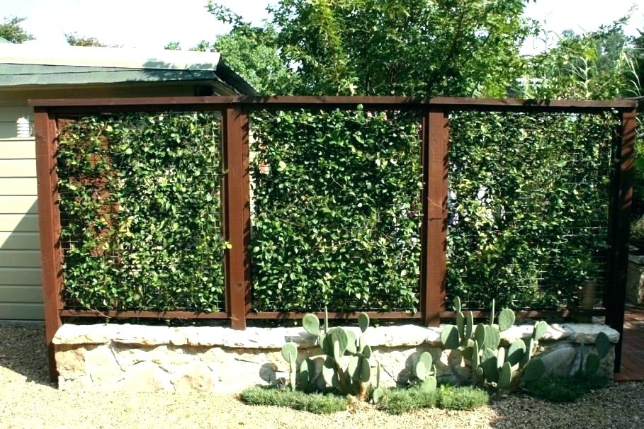 Picture of: Country Backyard Fence Ideas