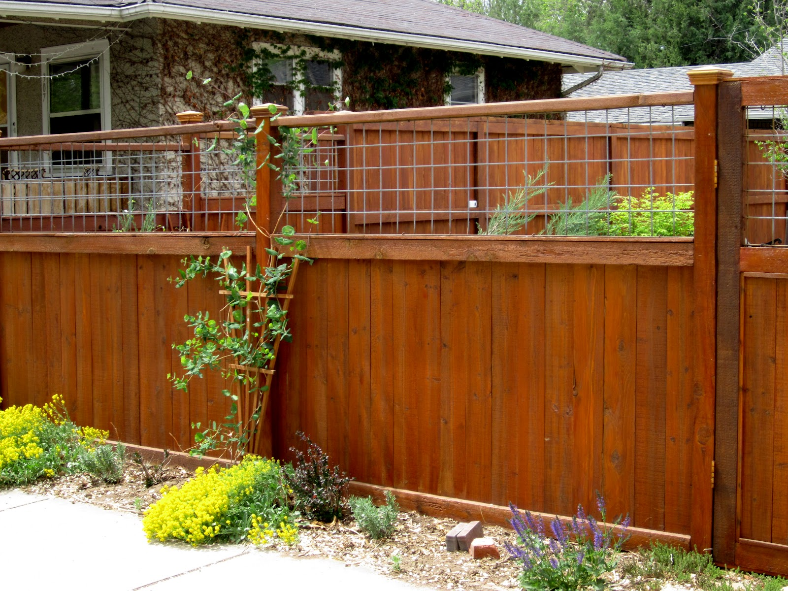 Picture of: Diy Privacy Fence Ideas Awesome