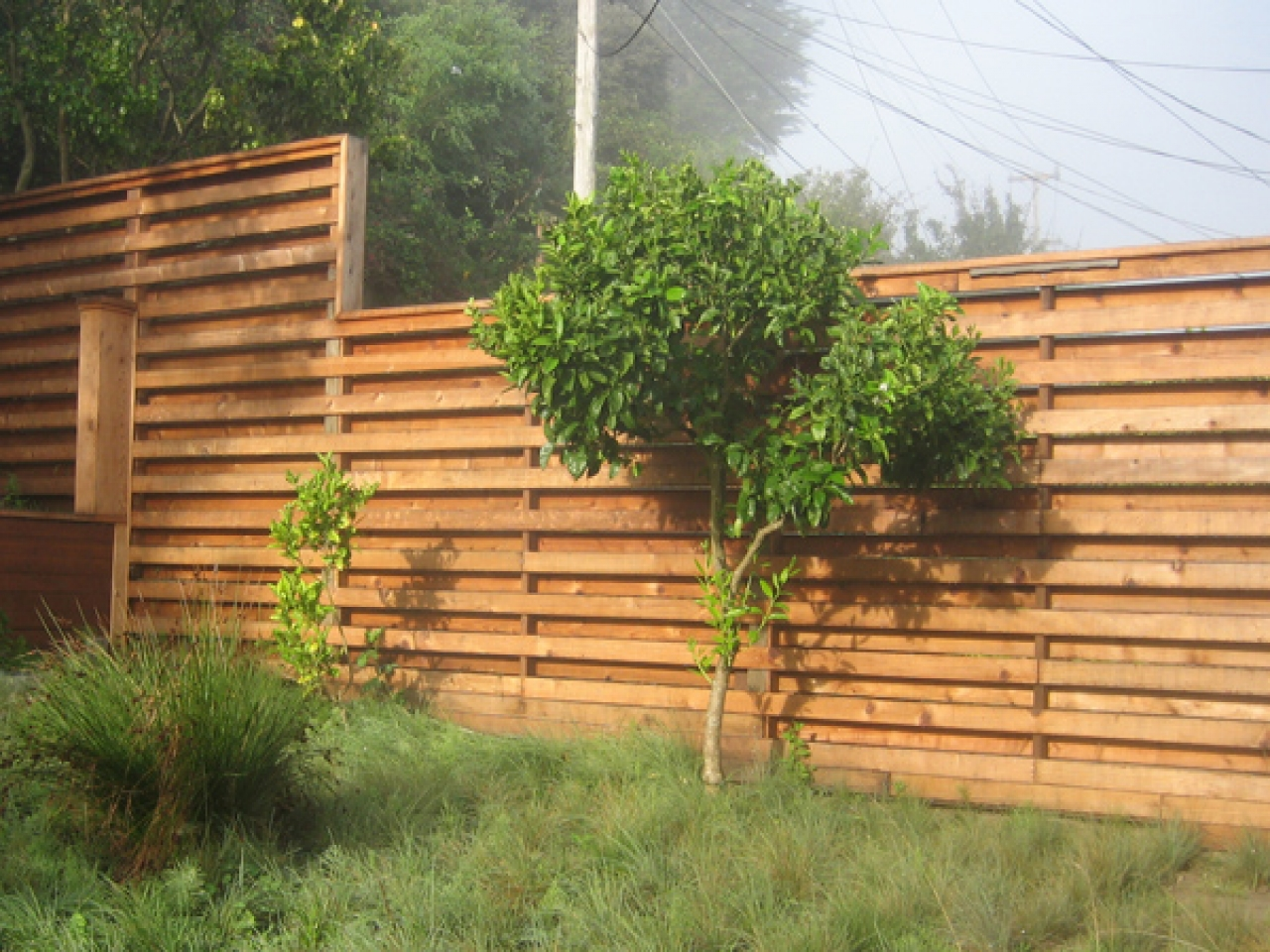 Picture of: Diy Privacy Fence Ideas Minimalist