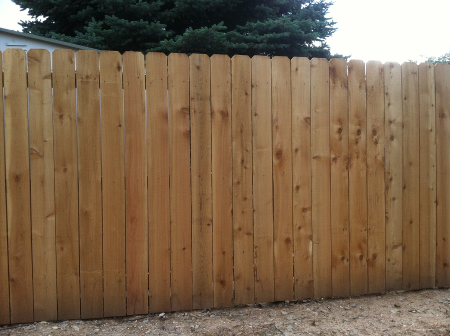Picture of: Dog Privacy Fence Ideas