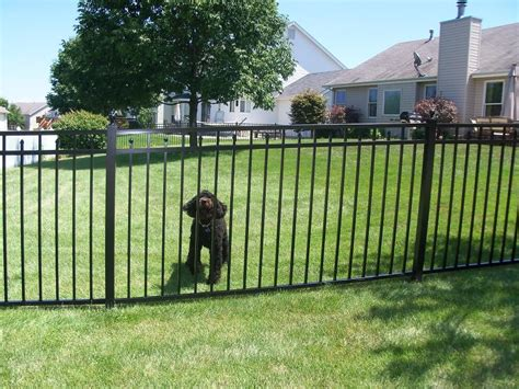Easy Metal Picket Fence